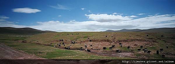 可可西里自然保護區
