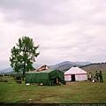 喀納斯湖區的草原
