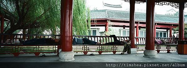 岳陽樓 庭園