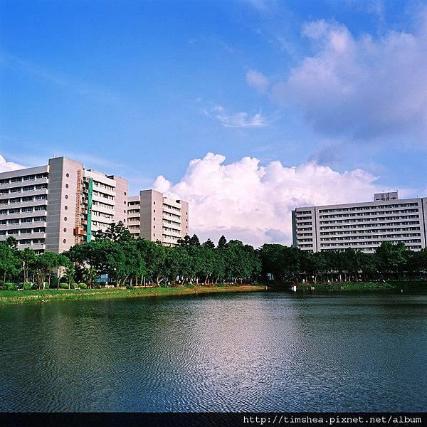 醫院 湖畔