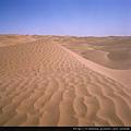 塔克拉瑪干沙漠01