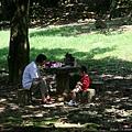 石門水庫  公園