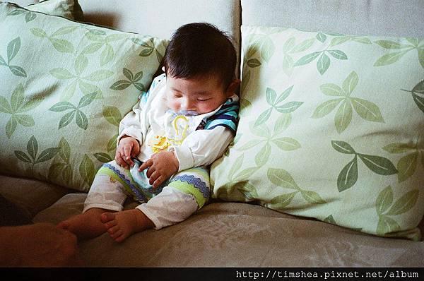 侑侑打瞌睡