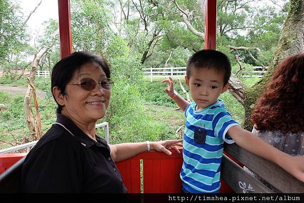 搭遊園火車 看動物