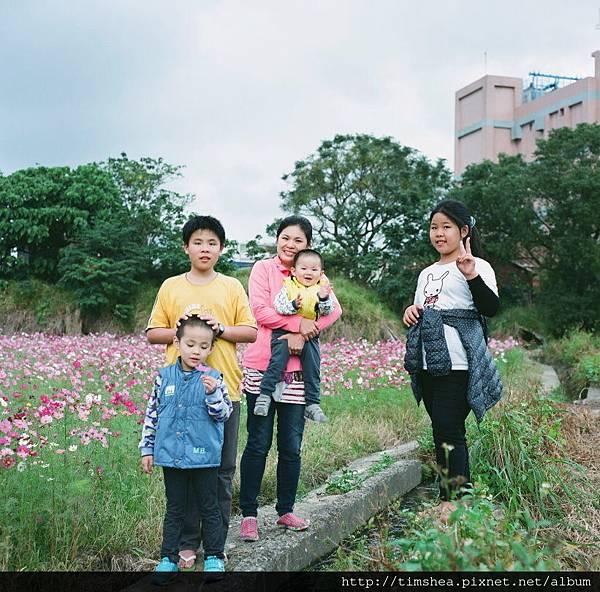 蘆竹花海66-07