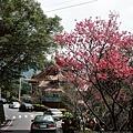 壽山巖觀音寺66-06