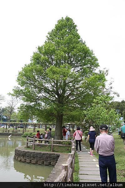 大湖公園20