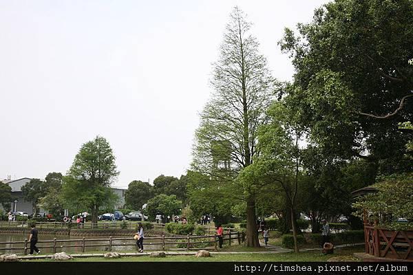 大湖公園26