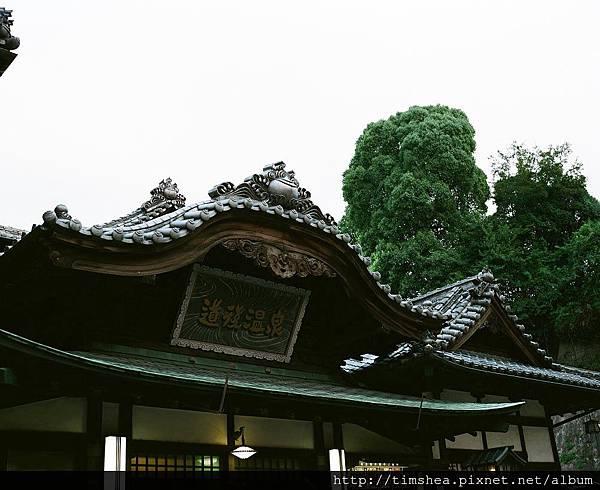 2017 日本四國 67-19.jpg