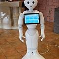毛巾工廠 機器人導覽