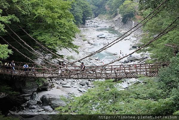 祖谷溪 藤蔓橋