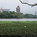峨嵋湖12.jpg
