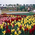 溪州花博會