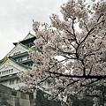 2004 大阪城