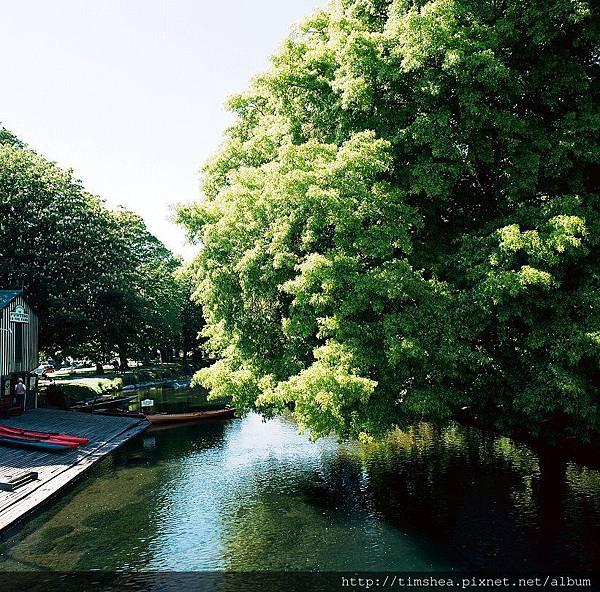 基督城 雅芳河