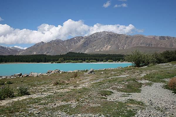 Tekapo 湖