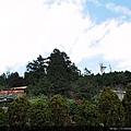 太平山  觀景台