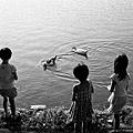 小孩與鴨子