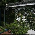 石門水庫  景觀餐廳