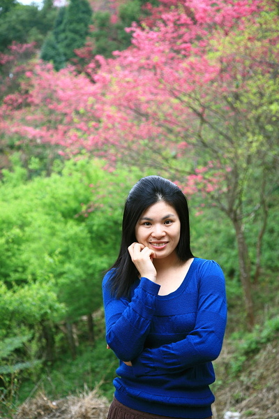 麗與山櫻花