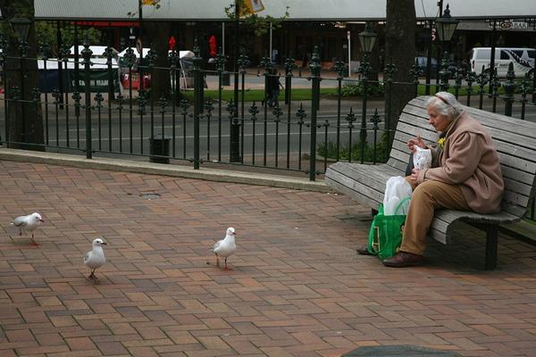八角廣場前  老婦