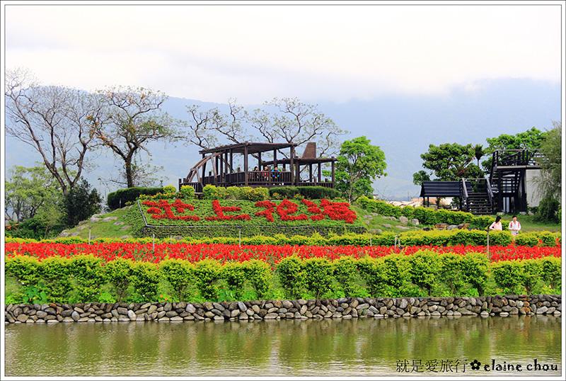 池上鄉農會四季花海25.jpg