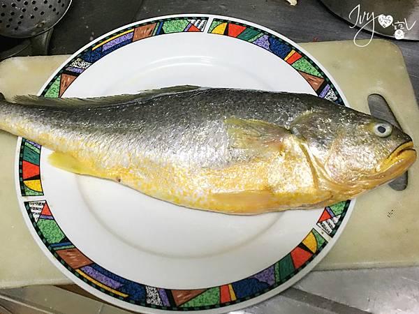 黃魚1.JPG