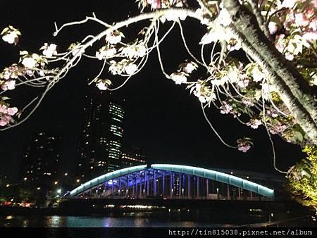 0419関西空港-大阪 (50).JPG