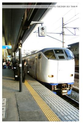 2008photo1227_15.jpg