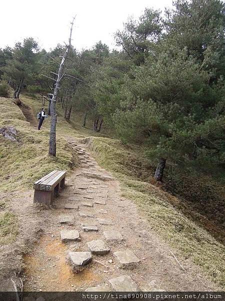 2-1040131-塔塔加-鹿林山步道 (30).jpg