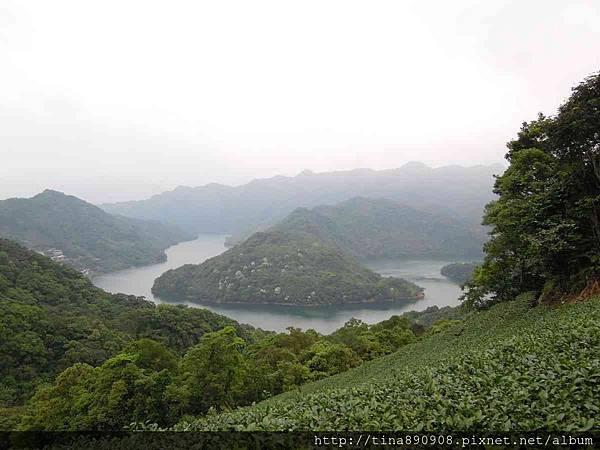 1040425-石碇-千島湖+八卦茶園 (1).jpg