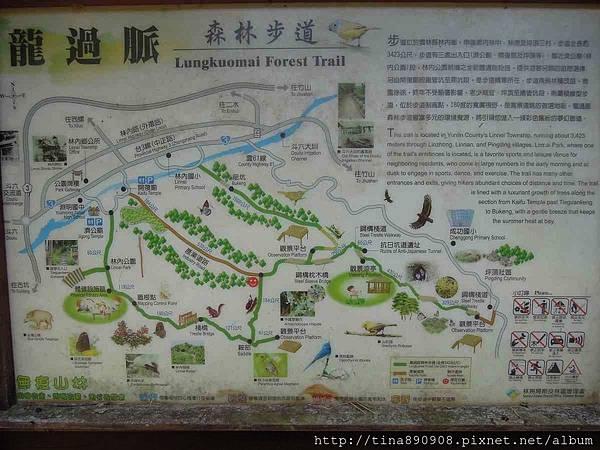 1051030-雲林-林內-龍過脈步道-2-叉路 (1).jpg