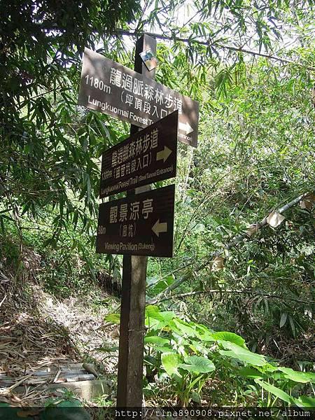 1051030-雲林-林內-龍過脈步道 (80).jpg