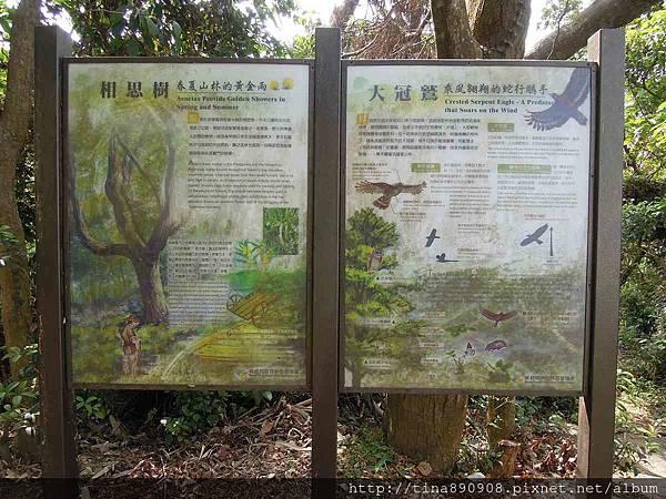 1051030-雲林-林內-龍過脈步道 (106).jpg