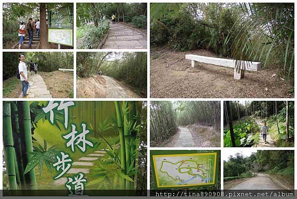 1051021-SS員旅-淡水線-DAY1-2-心鮮森林莊園- (21)-竹林步道.jpg