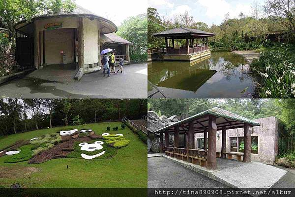 1051021-SS員旅-淡水線-DAY2-2-木柵動物園 (62)-園區一隅.jpg