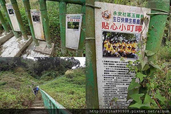 1060203-台東3天2夜-DAY3-1-玉龍泉生態步道 (47)-1.jpg