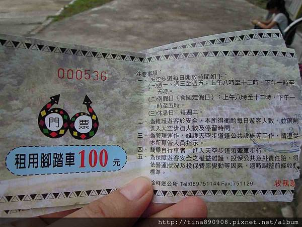 1060203-台東3天2夜-DAY3-2-嘉蘭天空步道 (37).jpg