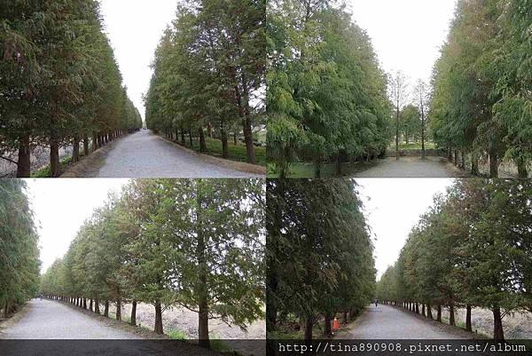1051226-彰化-成美文化園區 (19)-1.jpg