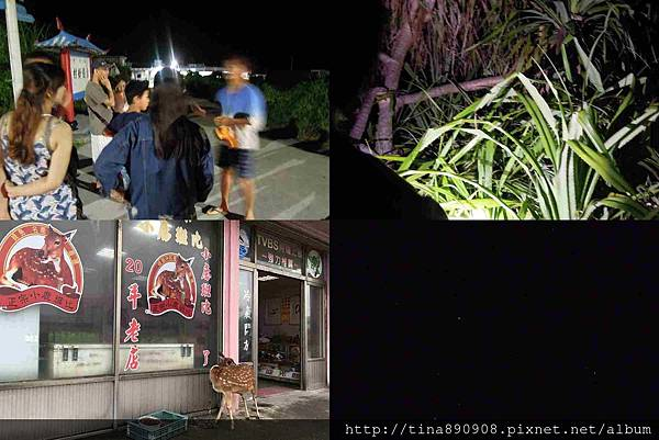 1060722-台東-綠島2天1夜-D2-12-夜間導覽.jpg