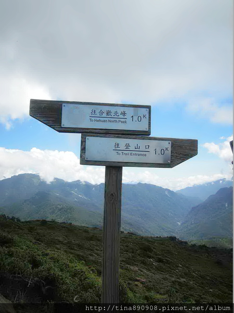 1060610-SS登山社-合歡北峰 (54)
