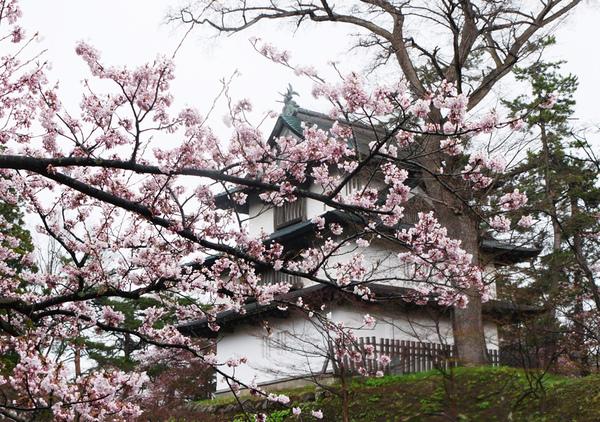 弘前城3.JPG