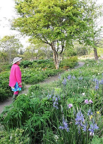 馬上帶我們參觀她的花園.JPG