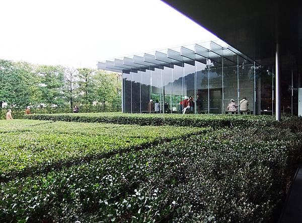 18平等院美術館-鳳翔館,裡面很有看頭,但不能拍照.jpg