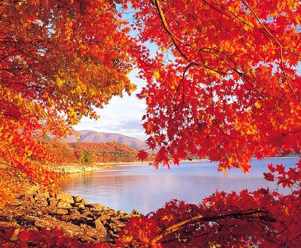 田澤湖.jpg