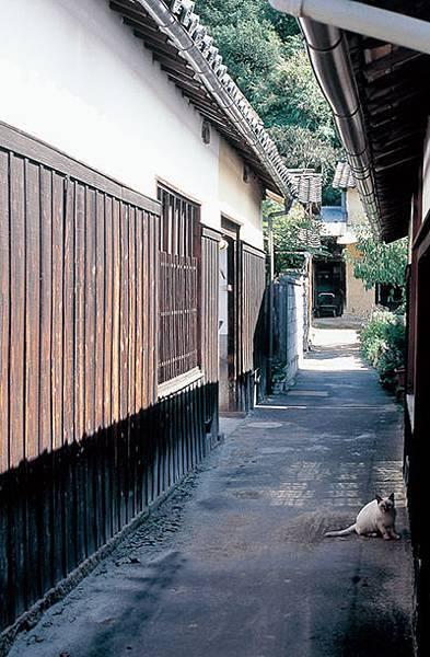 79本村honmura_02.jpg