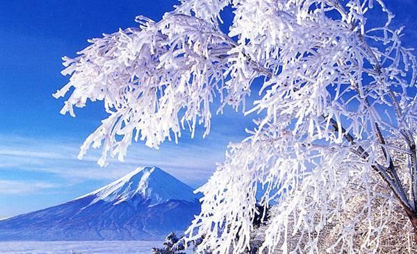冬的富士(御阪岬).jpg