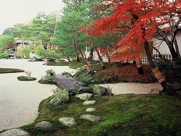苔庭的秋天.jpg