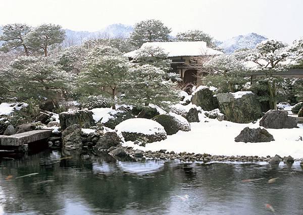 冬季池庭.jpg