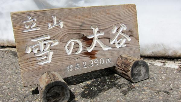 10雪大谷(karen)